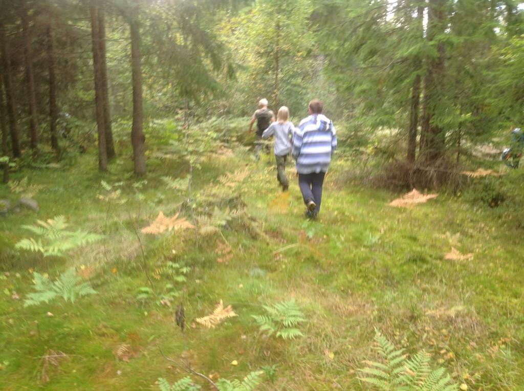 Jerv i full fart mot post 2, like bak aspirantene. Foto: Trond Engen