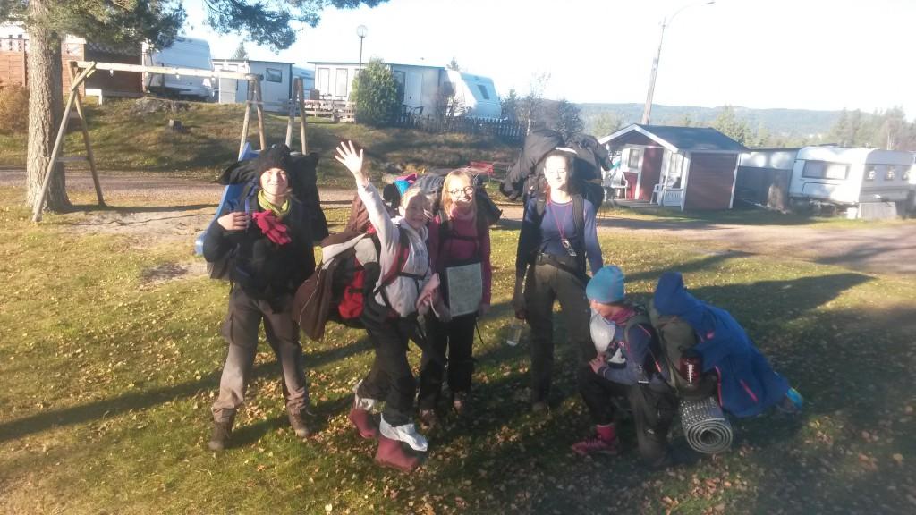 Skogdue kommer fram til Solvika etter å ha vært på tur siden fredag ettermiddag. Foto: Trond Engen
